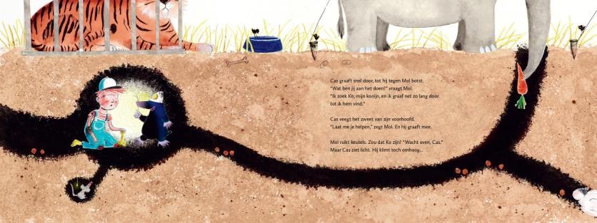 Waar is Ko? Auteur: Cobi Boomsma, uitgever: De vier windstreken